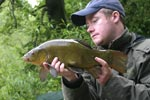 Male Tench